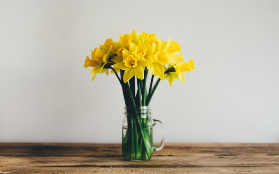 Three Ways to Celebrate St David's Day